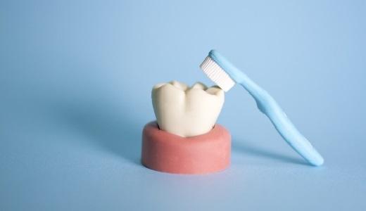 八重歯やむし歯のみがき方